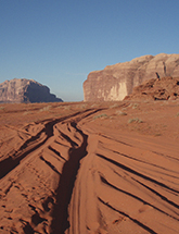 Tracks in the desert photo
