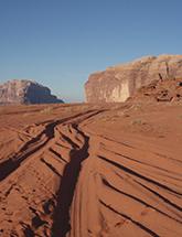 Tracks in the desert photo